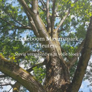 Lindeboom Maximapark